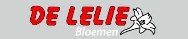 De Lelie, Bergentheim